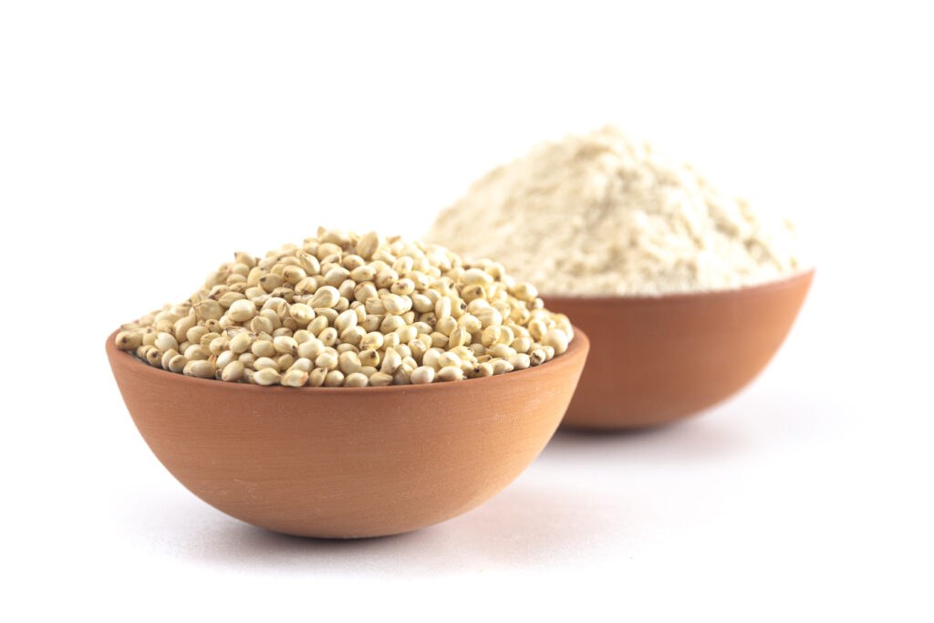 A Bowl of Sprouted Sorghum and Sorghum Flour Isolated on a White Background